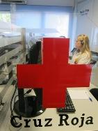 Gobex destina 880.000 euros a Cruz Roja para desarrollar los Espacios Educativos Saludables