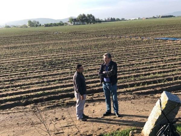 Técnicos de la Junta valoran 'in situ' los daños de las tormentas en explotaciones agrarias.