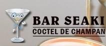 Bar Seaki