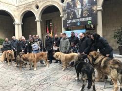 La Diputación de León destina un total de 22.000 euros a la promoción de las razas autóctonas de la provincia