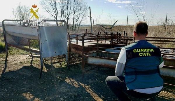 LA GUARDIA CIVIL DETIENE A DOS PERSONAS POR  ROBO Y HURTO EN DOS EXPLOTACIONES GANADERAS