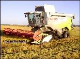 servicios agricolas en portugal,  balsas en don benito