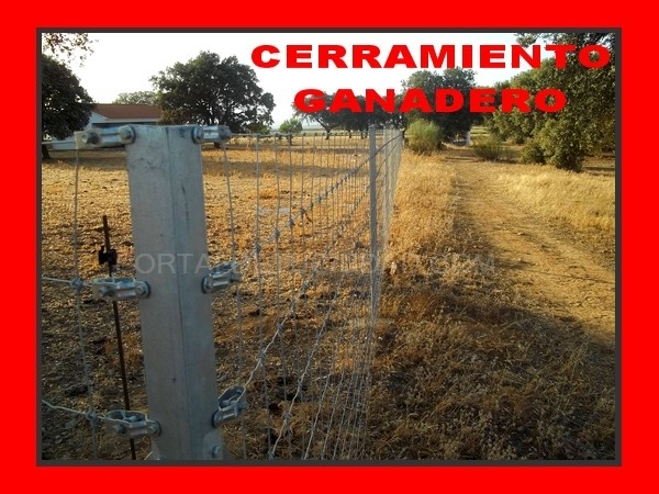 pasos canadienses, pasos canadienses en Extremadura, pasos canadienses en la serena