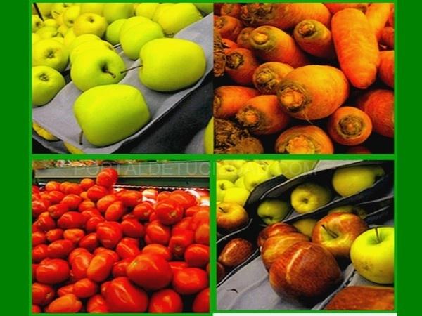 proveedores de tomate en polvo en España