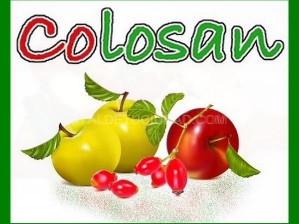 Proveedores de azúcar                 COLOSAN S L