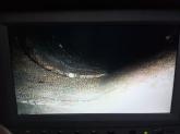 desatascos en Navalvillar de Pela, Destascos de urgencias en Zafra
