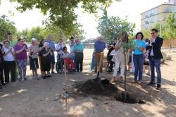 """Con la plantación del """"Árbol de la Memoria"""", AFAD Recuerda Extremadura pone en marcha su programación por el Día Mundial del Alzheimer"""