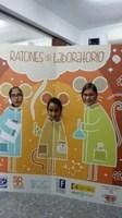 Ya se conocen los finalistas del proyecto Ratones de Laboratori