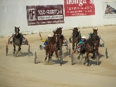 carreras de caballos al trote en ciutadella menorca