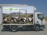 Transporte de carne Menorca, callos