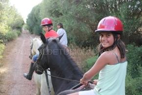Cami de Cavalls