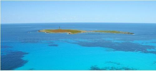 El Govern Balear aprueba definitivamente la declaración de la Reserva Marina de la Isla del Aire de Menorca impulsada por el Consell