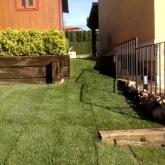 Jardinero en Vilamarxant y en Ribarroja del Turia, siembra cesped natural en La Eliana