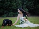 guarderia de perros Educa-dog, adiestrar al perro para boda