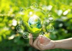 Las calderas de biomasa, sostenibilidad y eficiencia energética en tu vivienda