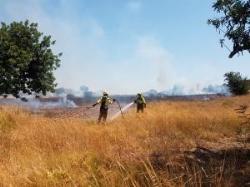 Es produïx un incendi en l'entorn pròxim a l'Hospital de Llíria