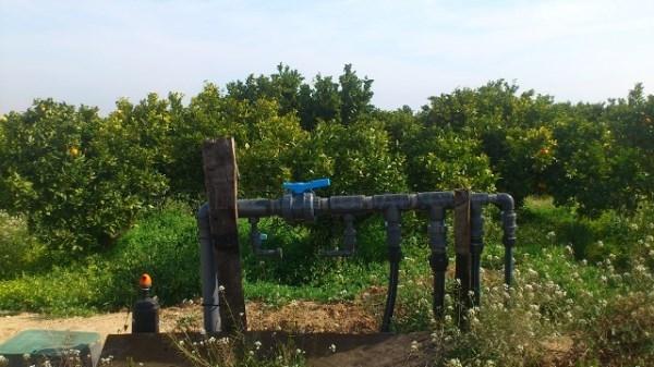 El Consell autoriza el convenio de IVIA y el Ayuntamiento de Loriguilla para investigar sobre el uso de agua de riego