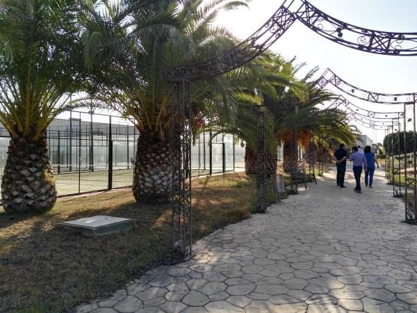 AYTO RIBARROJA DEL TURíA