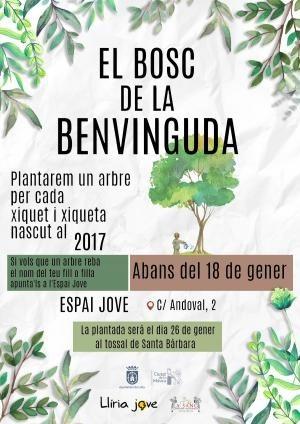 Llíria dedicará un árbol a cada una de las personas nacidas en 2017