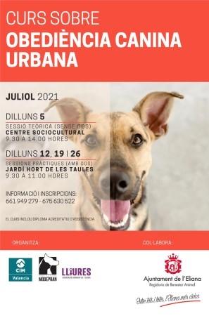 L'Eliana ofereix un curs gratuït d'obediència canina