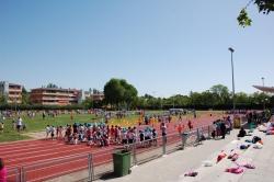 XXVIII Olimpiadas Escolares: una fiesta en torno al Deporte para los escolares de Primaria y del CEE Miguel Hernández