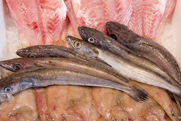 mejor pescadería de el espinar