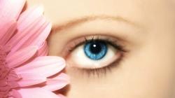 Consecuencias en los ojos de la Alergia primaveral