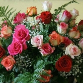 bonsais, flores