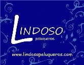 LINDOSO PELUQUEROS: Asesores de imagen y estilistas en Móstoles