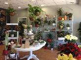 Floristerías y tiendas de flores,  Decoración para eventos, ramos de novias, elaboración de centros de mesa