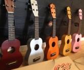 instrumentos musicales zona sur, Instrumentos musicales