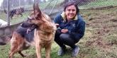mascotas navalcarnero, clinica para perros navalcarnero