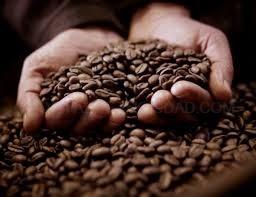 10 BENEFICIOS DEL CAFé COMPROBADOS POR LA CIENCIA MODERNA