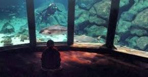 Sala Nautilus