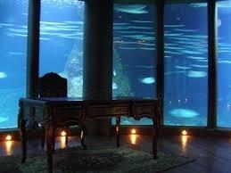 Sala Nautilus en Aquarium Finisterrae, A Coruña