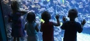 niños en Aquarium Finisterrae, A Coruña