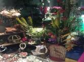 Floristerías y tiendas de flores