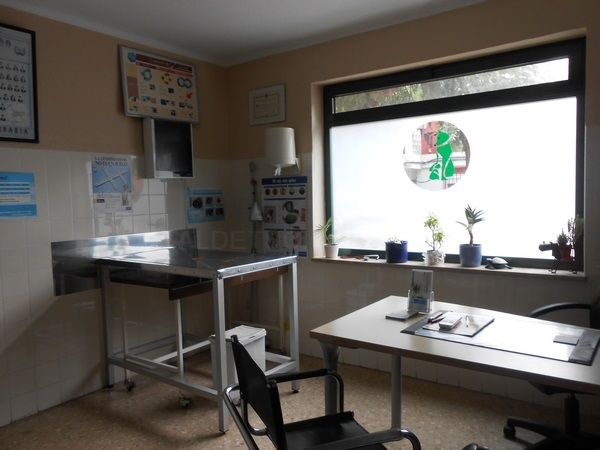 Clinica Veterinaria Alboraya