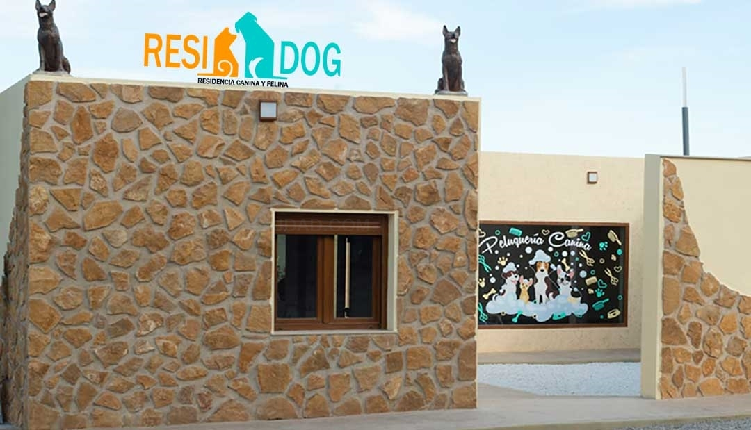 Residencia Canina Valencia
