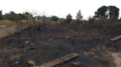 Sofocan un incendio cerca de la CV-310 en término municipal de Godella