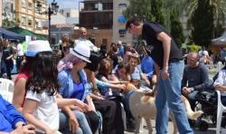 Las VII Jornadas Animalistas llegan a la Plaza del Ayuntamiento el domingo 22 de octubre