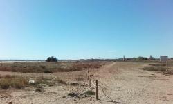 Massamagrell protege su sistema dunar en la playa
