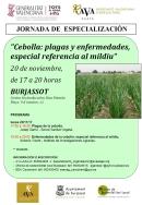 Burjassot acoge una jornada de especialización agrícola sobre las plagas y enfermedades que afectan a la cebolla