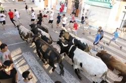 Sant Joan comienza con un encierro puntual, rápido y sin incidentes de hermanos Cabello en Puçol