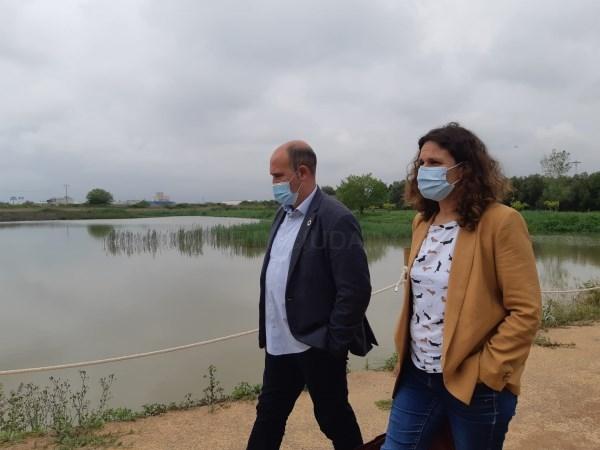 Un filtro verde ejecutado por la Conselleria de Agricultura renaturaliza en la marjal un terreno degradado de Massamagrell