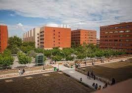 Un estudio de la Xarxa Vives demuestra que los programas de La Nau Gran y Unimajors de la Universitat de València mejoran la salud física y mental