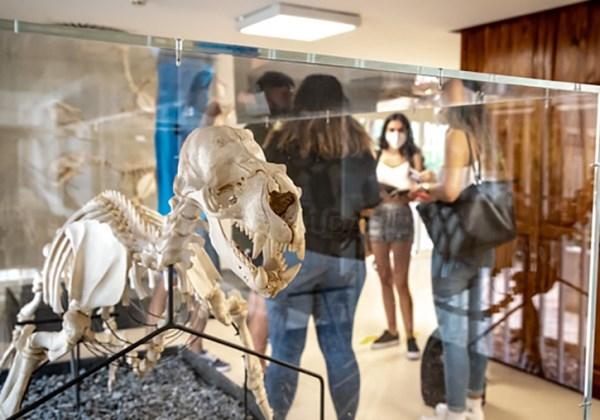 La Universitat de València pone en marcha el proyecto Una ventana digital a la Historia Natural con el apoyo de la FECYT