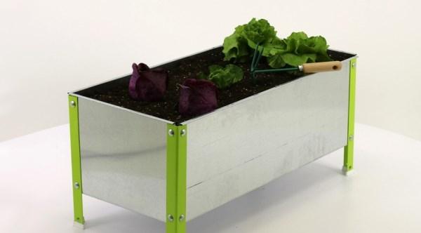 Los mejores huertos urbanos para cultivar tus plantas