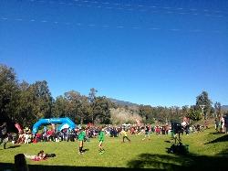 Más de 1.500 personas participan en el XXI Cross San Pedro de Alcántara.