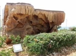 El Parque Arqueológico pone en valor la réplica de La Cueva de la Victoria que muestra pinturas rupestres del Neolítico